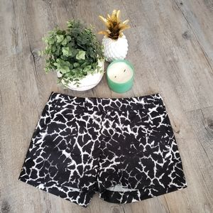 CALVIN KLEIN | B&W Leopard Print Size 6 Shorts